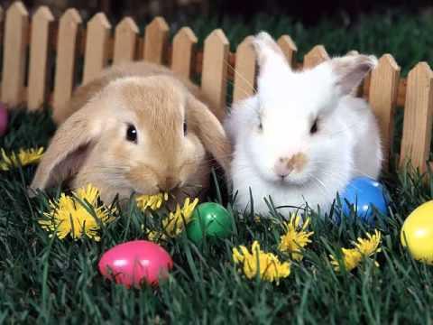 Великденски яйца - песен