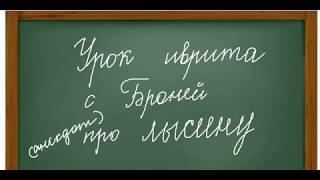 Урок иврита с Броней. О лысине.. и корне ק.ר.ח. анекдот и чуточку о словообразовании