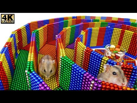 Funny Pet. Build 6-Level Circle Maze For Hamster From Magnetic Balls (Satisfying)| Magnet Satisfying