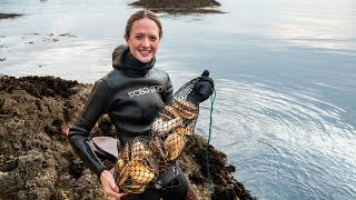Scotland Scallop diving - We've NEVER seen so many!