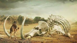 Die 8 schockierendsten Funde in der WÜSTE