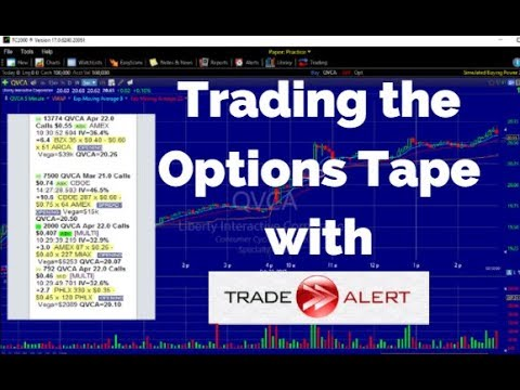 Option trading alert review