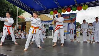Rákosmenti Karate Se. Hom Center bemutató