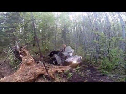 World Class Saskatchewan Bear Hunt