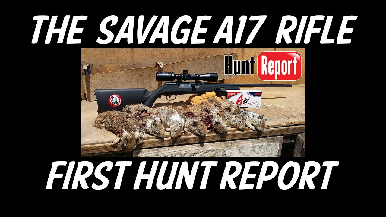 Savage A17 « Daily Bulletin