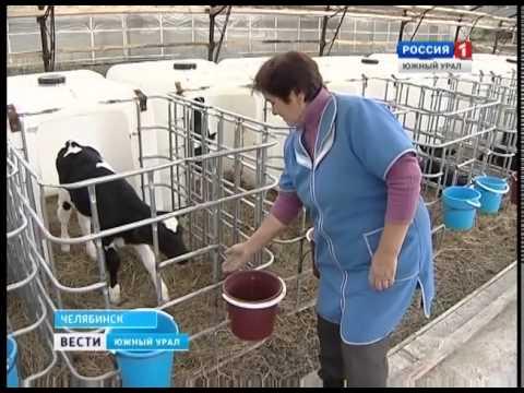 Кризис молочной отрасли