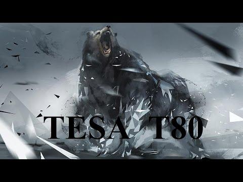 Взлом отмычками Tesa T80  Вскрытие цилиндра TESA_T80 8PIN (ТЕСА 8 ПИНОВ)