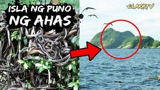 Isla na Puno ng Ahas - Islang Maraming Ahas