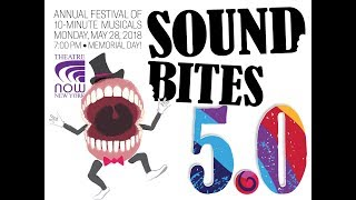 SOUND BITES 5.0 Hightlight Reel (Presented by Theatre Now New York)