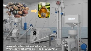 Small scale palm kernel oil processing machine, palm kernel oil making machine 3D animation video