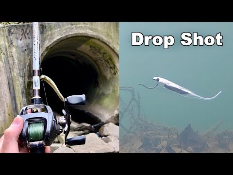 WINTER FISHING MADNESS!!! (Underwater Drop Shotting)
