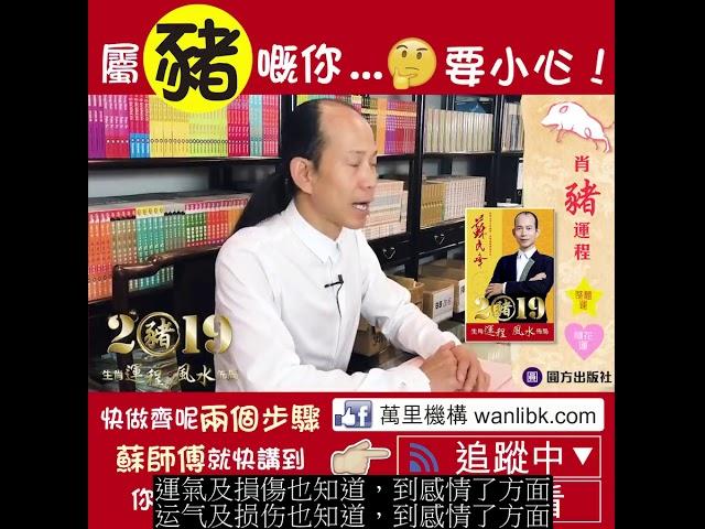蘇民峰 2019豬 生肖運程*風水佈局 (豬) (繁简字幕)