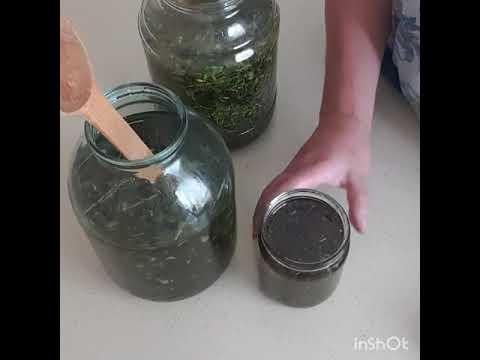 Орегановое масло и др.рецепты красоты и здоровья.