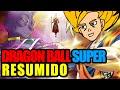 DRAGON BALL SUPER RESUMIDO