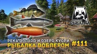 Русская Рыбалка 4 #111 - Река Волхов и озеро Куори. Рыбалка воблером (Russian Fishing 4)