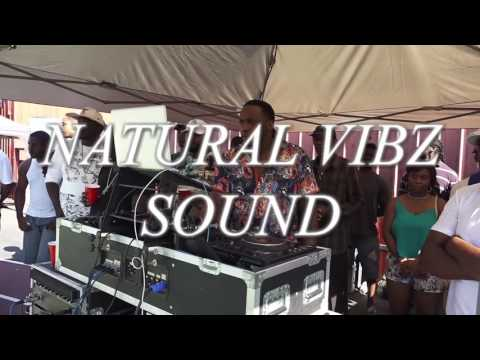 P S 202 SCHOOL YARD SOUND SYSTEM CLASH FINALS 8 28 2016