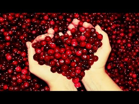 5 Incredible Reasons To Eat Cranberries Every Day