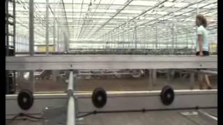 Gartenbaubetriebe  Keimzelle für Gartenbaubetriebe - Otte Metallbau - TrClip