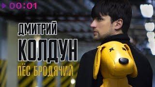 Дмитрий Колдун - Пёс бродячий   Official Audio   2019