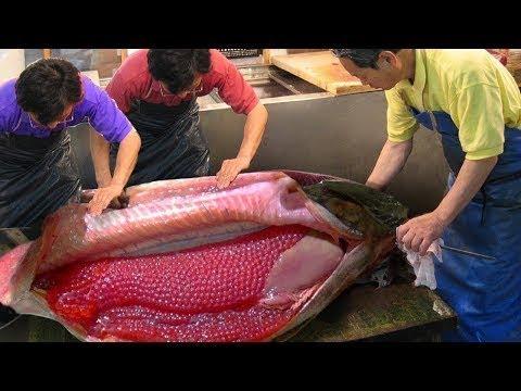 Ngỡ Ngàng Với Cách Lấy Trứng Và Thịt Cá Hồi   Harvest Eggs and Meat Salmon