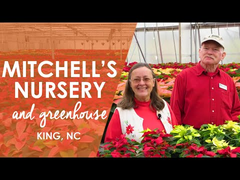 Mitchell's Nursery and Greenhouse in King  North Carolina Weekend  UNC-TV