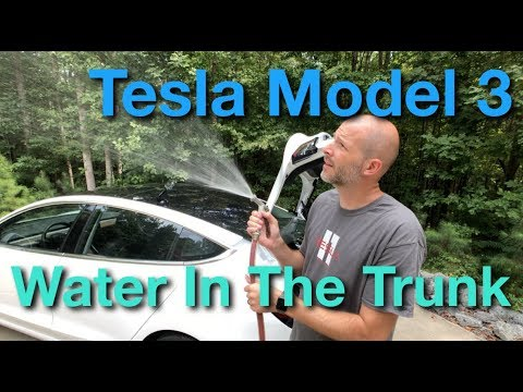 Water In The Trunk Model 3