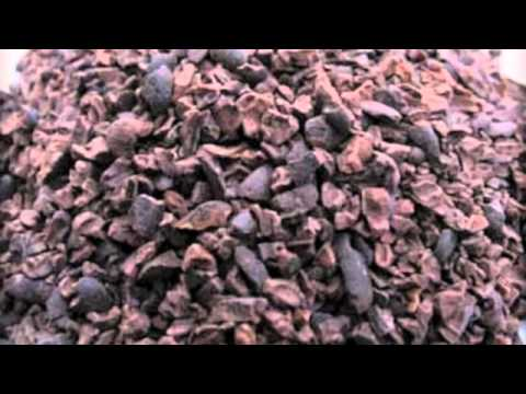 Raw Chocolate - The Toxic Truth about Raw Cacao