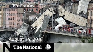 The National for August 14, 2018 — Bridge Collapse, Trump Insults, Wildfire Smoke