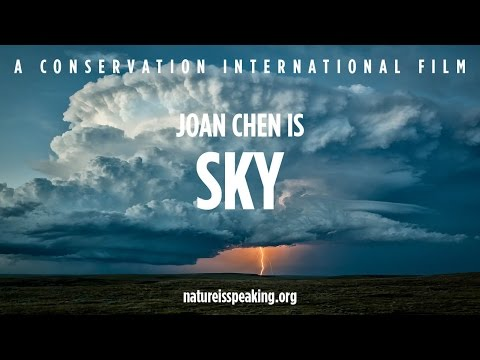 Nature Is Speaking: Joan Chen is Sky  Conservation International CI