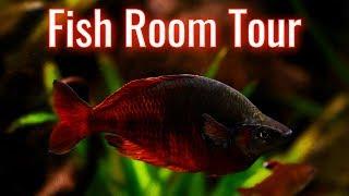 Fish Room Update/Tour