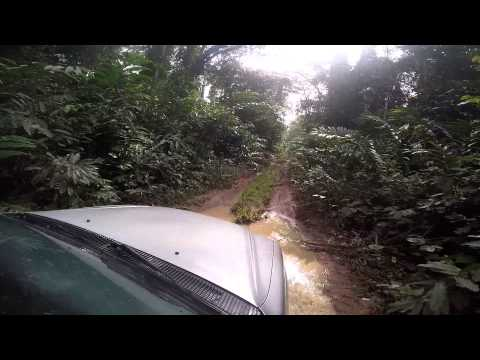 Driving the Jungle Roads of the Central African Republic