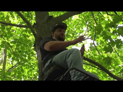 WHITETAIL UNIVERSITY: EPISODE 4: TREESTANDS