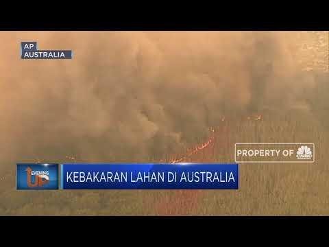 Kebakaran Lahan Di Australia