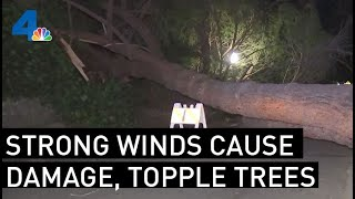 Strong Winds Topple Trees, Damage Cars Throughout SoCal | NBCLA