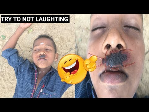 must watch new funny comedy videos 2019-episode 03 ||369-funny vines||