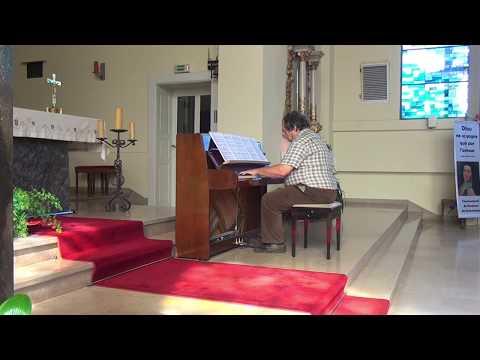 Mozart - Piano Concerto No. 17 in G major, K. 453 (Patrice Vogel)