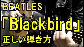 ビートルズ 「ブラックバード」 正しい弾き方 Beatles Blackbird correct way to play guitar 怪盗黒猫