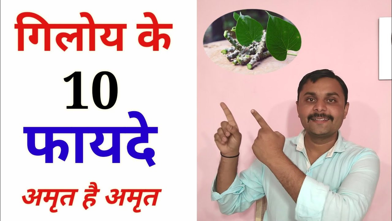 गिलोय के फ़ायदे | Health Benefits of Giloy | Giloy for Jaundice, fever,  weight loss and Diabetes