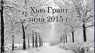 Хью Грант, зима 2015 г. Длинношерстная такса.