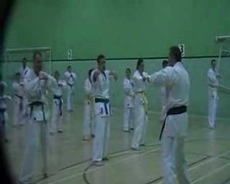 Karate Jutsu Kai / IBK - Basic training 2