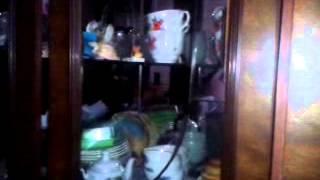 реклама (липтон+пемолюкс)-2 о ма факен щет(прекрасное видео с прекрастным сюжетом и сценами., 2013-01-25T11:15:57.000Z)