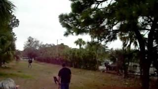 Tampa Working Dog Club6