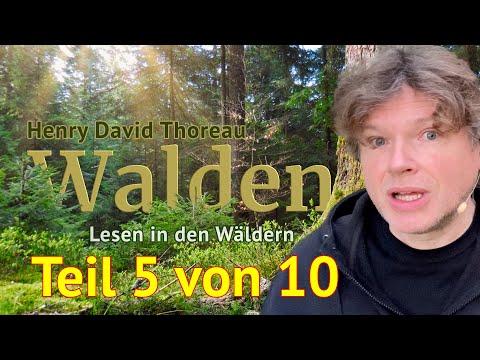 Henry David Thoreau: Walden – Teil 5 von 10 – Das Lesen in den Wäldern