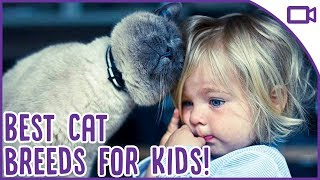 Best Cat Breeds for Kids - Child-Friendly Cat Breeds!