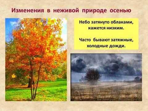 ГИПО И АВИТАМИНОЗЫ Сезонные заболевания Весна