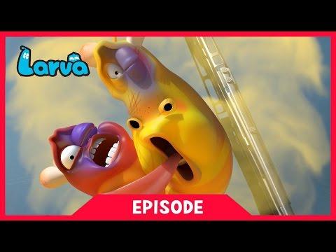 LARVA - THE TAXI | 2017 Cartoon Movie | Cartoons For Children | 라바 | LARVA Official