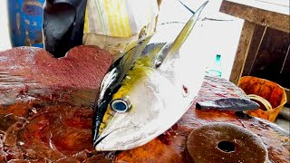 Beautiful Fresh Tuna Fish Cutting | Fish Cutting Skills Sri Lanka