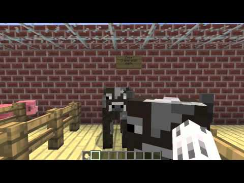 Pet Topia: Minecraft Pet Store and Pet Supplies - YouTube