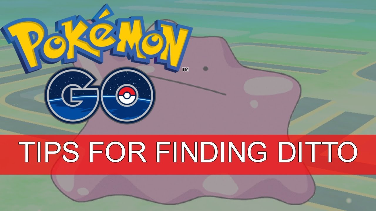 how to catch ditto pokemon go