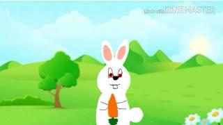Animação coelho comendo cenoura